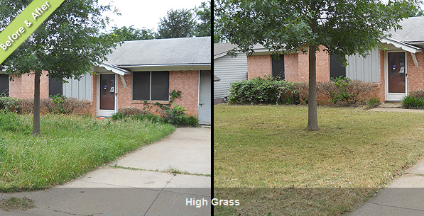 High Grass Before and After